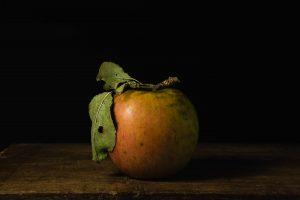 een appel, foto van Yola de Lusenet