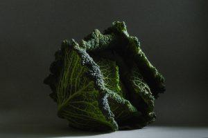 boerenkool, foto van Yola de Lusenet